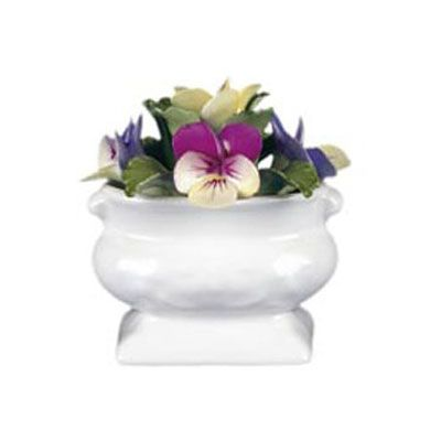 Aynsley Anniversary Flowers July Pansy