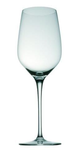 Rosenthal Studio-Line Fuga White wine young